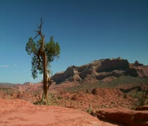 Couple hiking in red rock desert Stock Footage
