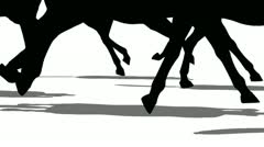 Silhouette of animal legs running side view, loopable Stock Footage