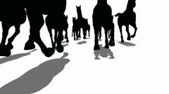 Many silhouette horses running front view moving camera Stock Footage