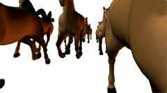 Horses 3D running front view, loopable. Stock Footage