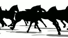 Silhouette of horses running side view, loopable Stock Footage