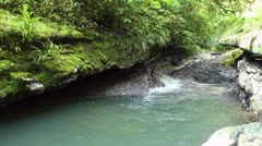 Rio Latas near Misahualli, Ecuador running through strata of limestone rock - stock footage