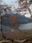 Lake with tree and mountains Stock Photos