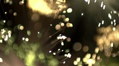Abstract fibre optic lights shot in super slow motion Stock Footage