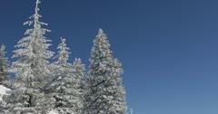 UHD Ultra HD 4K Winter Landscape, Beautiful Mountains in Cold Season Fir Tree Stock Footage