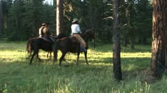 COWBOYS/COWGIRLS RIDING HORSES  IN THE ROCKY MOUNTAINS Stock Footage
