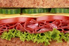 closeup of a sandwich with salami - stock photo