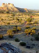 grasslands track - stock photo