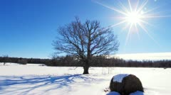 Winter timelapse Stock Footage