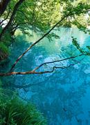 summer azure  limpid  transparent lake (plitvice, croatia) - stock photo