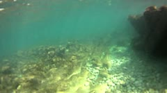 Underwater mediterranean beach Stock Footage