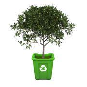 fruit tree in recycle bin - stock illustration
