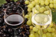 white wine and red wine in glasses - stock photo