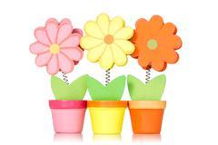 decorative wooden flowers - stock photo