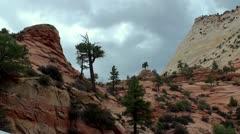 Zion National Park, Utah, USA - stock footage