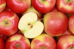 red apples forming a background - stock photo