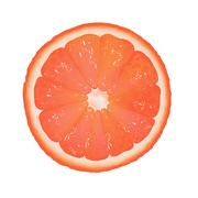 Grapefruit segment Stock Illustration