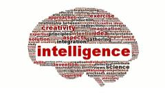 Intelligence symbol word clouds concept Stock Footage