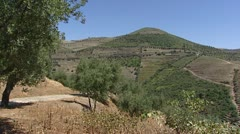 Alto Douro Wine Region pan terraced vineyards Stock Footage
