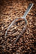 metal scoop with coffee beans - stock photo