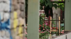 Private Garden next to wall  (Focus Pull) Stock Footage