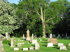 Quiet Cemetery Stock Photos