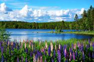 Stock Photo of scandinavian summer landscape