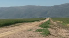 Scenic shot of dirt road through wheat fields with mountain in background PAL Stock Footage
