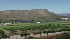 Wine farm, vineyards on the west coast of South Africa PAL Stock Footage