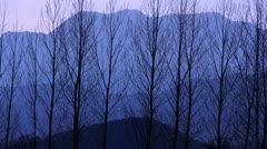 Winter trees Silhouette against mountains Stock Footage