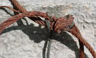 Stock Photo of Knotted rusty steel wire against concrete wall