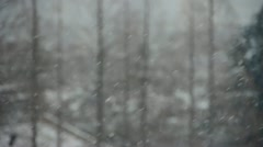 Falling snowflake,snow cover house & forest. Stock Footage