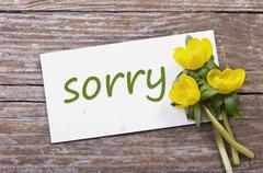 sorry - stock photo