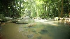 Rainforest River loop - stock footage