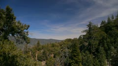 Pan of San Bernardino National Forest Near Big Bear Stock Footage