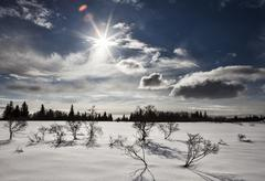 Sunburst with snow Stock Photos