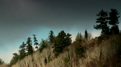 Trees on a Hill beneath Moody Sky Stock Footage