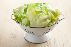 green lettuce in colander - stock photo