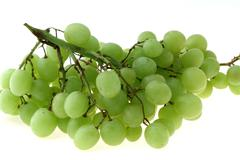 grape cluster - stock photo