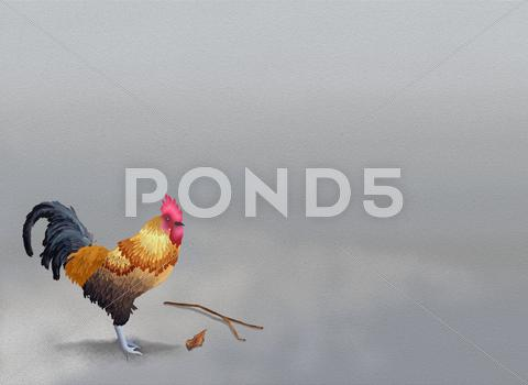 Stock Illustration of Beautiful Chicken Standing on Grey Sand with Copyspace