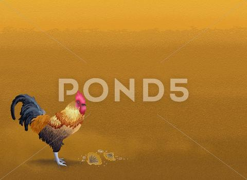 Stock Illustration of Beautiful Chicken Standing on Brown Sand with Copyspace