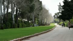 Avenue of trees and lawns Stock Footage