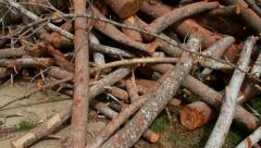 Logs pile Stock Footage