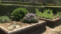 Herb garden of monastery Stock Footage