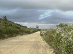 Dirt road in australian wilderness - pan landscape Stock Footage