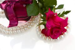 Pink rose with pearl necklace Stock Photos