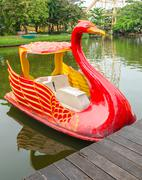 Swan boat for rent in public pond Stock Photos
