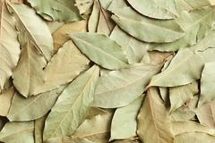 Stock Photo of dry bay leaves background