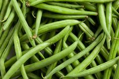 bean pods background - stock photo