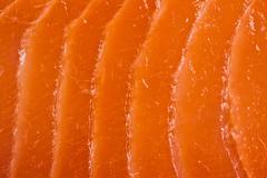 Salmon meat texture Stock Photos